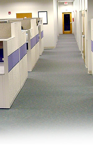 Flooring Services Charleston Sc : Carpet bonnet cleaning reisterstown white marsh